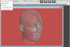 Facial Studio - Selecting through different surface models