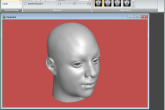 Facial Studio - Applying surface to the 3D model