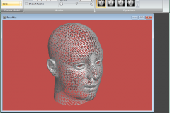 Facial Studio - Applying triangle to the 3D model