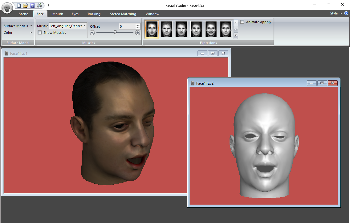 Facial Studio - Different views available for the 3D model